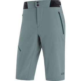 GORE WEAR C5 Shorts Heren, nordic blue